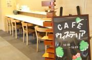 藤沢エデンの園一番館(住宅型有料老人ホーム)の画像(12)