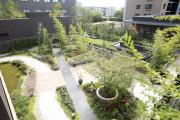 アリスタージュ経堂(介護付有料老人ホーム)の画像(21)お庭も素敵ですね♪