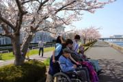 舞浜倶楽部新浦安フォーラム(介護付有料老人ホーム)の画像(11)春のお散歩