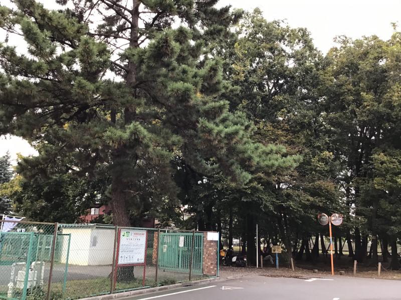 ライフコミューン深大寺(介護付有料老人ホーム)の画像(11)