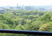家族の家ひまわり聖蹟桜ヶ丘(介護付有料老人ホーム)の画像(10)