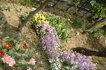 ベストライフたま(介護付有料老人ホーム)の画像(13)花壇