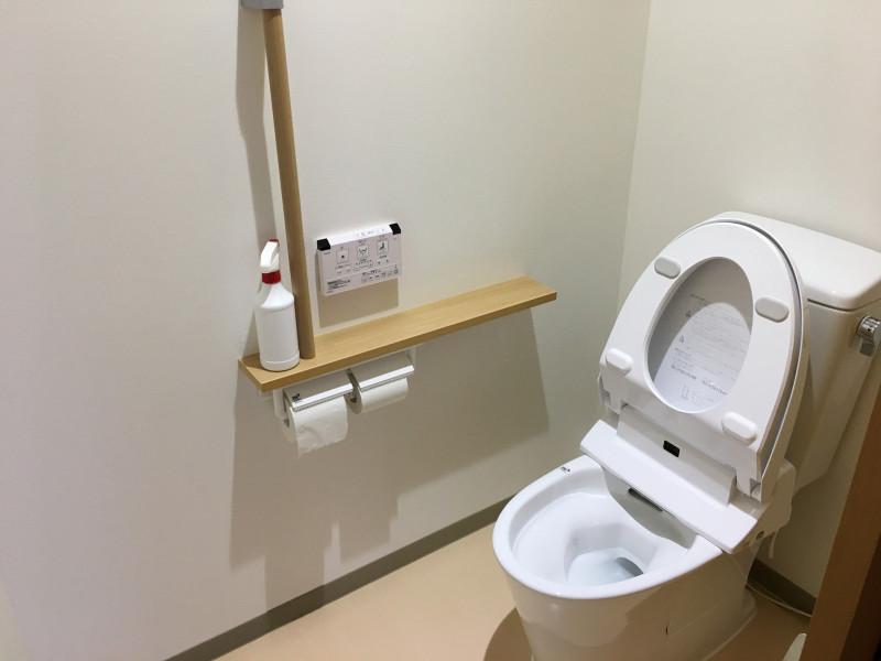 コンフォータブル・プラス 蓮沼(その他高齢者向け住宅)の画像(12)共用トイレ