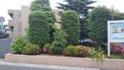 みんなの家・春日部やなか(グループホーム)の画像(5)緑の多い駐車場です。