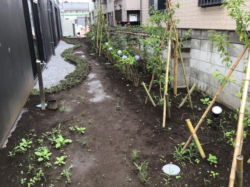 ライブラリ越谷(サービス付き高齢者向け住宅(一般型特定施設入居者生活介護))の画像(30)庭園