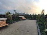ソナーレ駒沢公園の画像(2)