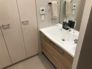 デュオセーヌ横濱東戸塚(シニア向け分譲マンション)の画像(23)収納たっぷりの洗面所