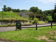 ベストライフ武蔵村山(住宅型有料老人ホーム)の画像(12)