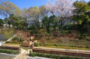 ヒルデモア世田谷岡本(介護付有料老人ホーム)の画像(6)庭園