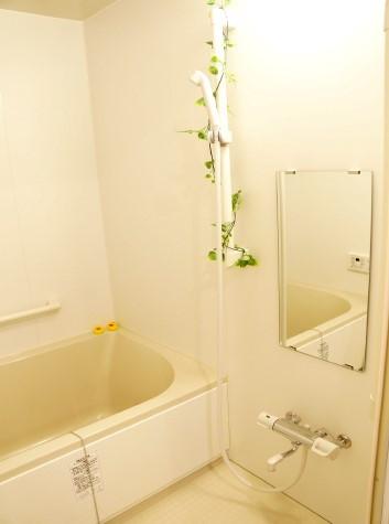 ゆうペットシニア (女性限定)(サービス付き高齢者向け住宅)の画像(3)浴室