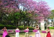 サクラビア成城(介護付有料老人ホーム)の画像(28)