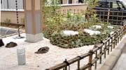 イリーゼ市川(住宅型有料老人ホーム)の画像(5)