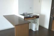ココファン鴻巣(サービス付き高齢者向け住宅)の画像(6)キッチン付き居室