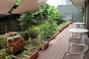 ボンセジュール南浦和(介護付有料老人ホーム(一般型特定施設入居者生活介護))の画像(8)中庭