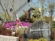 グランパーシモン(サービス付き高齢者向け住宅)の画像(8)