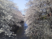 せらび新宿の画像(2)