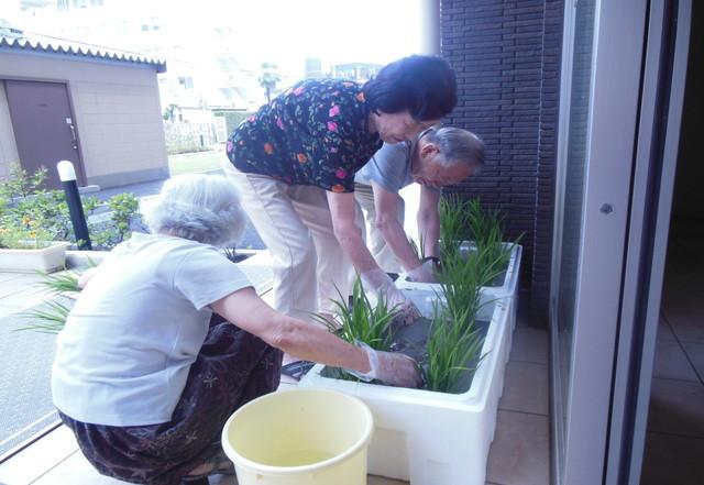 リーシェガーデン和光/南館(サービス付き高齢者向け住宅)の画像(28)