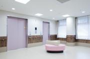ディーフェスタ川口芝高木(サービス付き高齢者向け住宅)の画像(13)