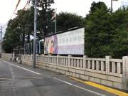 チャームスイート新井薬師さくらの森(介護付有料老人ホーム)の画像(19)氷川神社