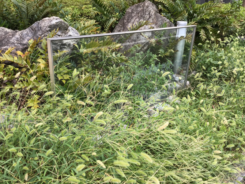 チャームスイート新井薬師さくらの森(介護付有料老人ホーム)の画像(18)玄関先