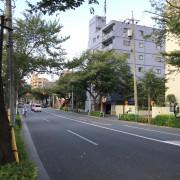 チャームスイート新井薬師さくらの森弐番館(介護付有料老人ホーム)の画像(19)中野通り