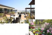 グランダ桜新町(住宅型有料老人ホーム)の画像(10)屋上