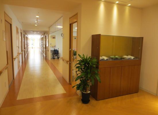 ひだまりガーデン南町田(介護付有料老人ホーム(一般型特定施設入居者生活介護)/サービス付き高齢者向け住宅)の画像(5)