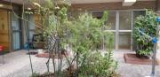 そんぽの家大宮(介護付有料老人ホーム)の画像(15)中庭