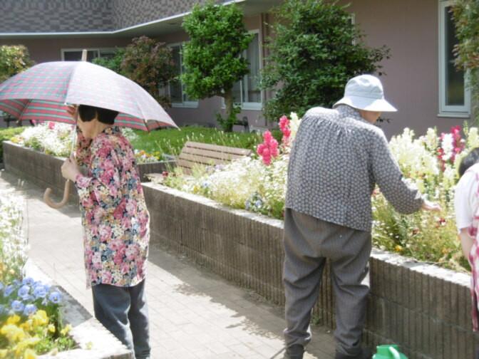 そんぽの家東川口(介護付有料老人ホーム)の画像(14)庭園