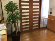 そんぽの家東六郷(介護付有料老人ホーム)の画像(13)