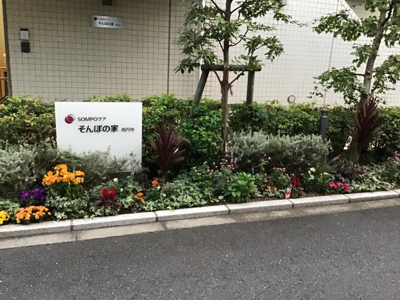 そんぽの家高円寺(介護付有料老人ホーム)の画像(16)玄関2
