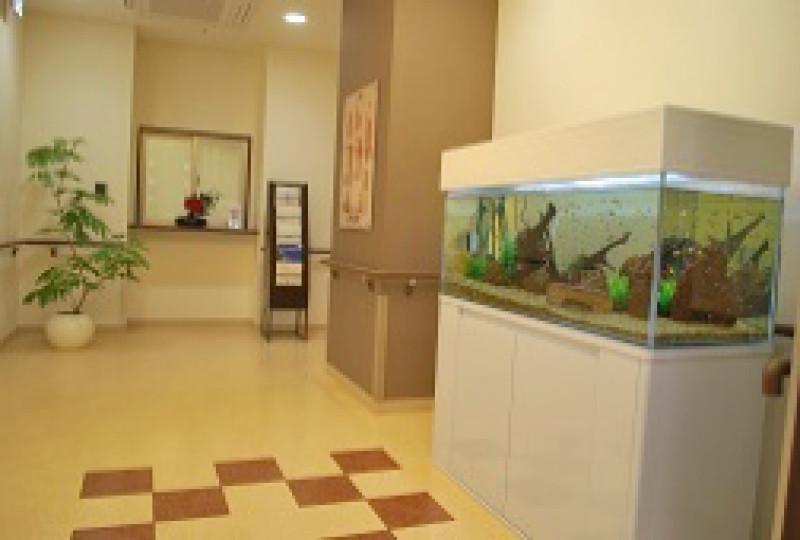 そんぽの家S西大井(サービス付き高齢者向け住宅)の画像(2)