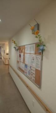 そんぽの家S上石神井(サービス付き高齢者向け住宅)の画像(10)共用部の掲示板です♪