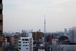そんぽの家S綾瀬(サービス付き高齢者向け住宅)の画像(7)居室からの眺望