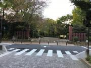 そんぽの家S井荻(サービス付き高齢者向け住宅)の画像(22)公園2