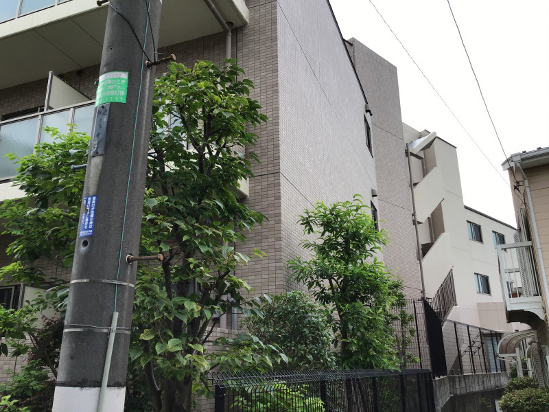 そんぽの家S江古田(サービス付き高齢者向け住宅)の画像(21)外観6