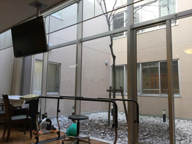 有料老人ホーム シェモア西台(介護付有料老人ホーム(一般型特定施設入居者生活介護))の画像(2)中庭