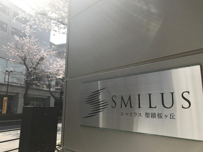 スマイラス聖蹟桜ヶ丘(サービス付き高齢者向け住宅)の画像(5)桜の季節のスマイラス