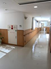 ヴェルジェ新横浜Ⅲ なしの郷(サービス付き高齢者向け住宅)の画像(3)広い廊下