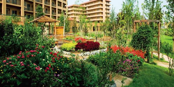 グリーンフォレストビレッジ桜ガーデンの画像