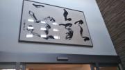 ハーウィル栗橋(サービス付き高齢者向け住宅)の画像(11)ハーウィル栗橋 玄関