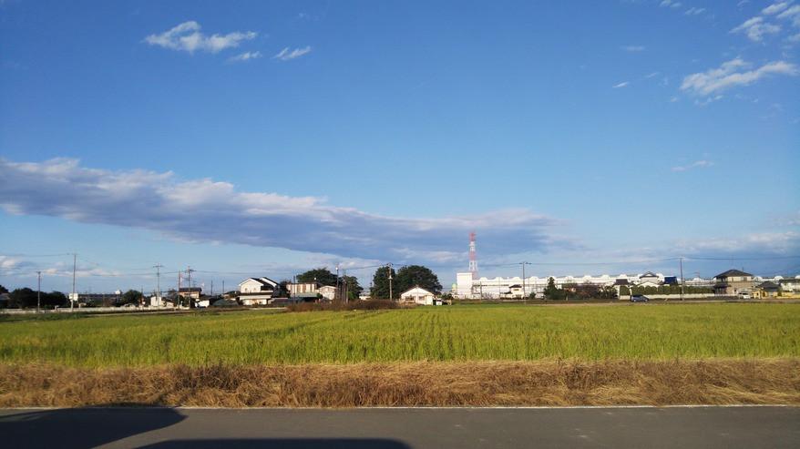 ハーウィルアシスト栗橋(サービス付き高齢者向け住宅)の画像(19)