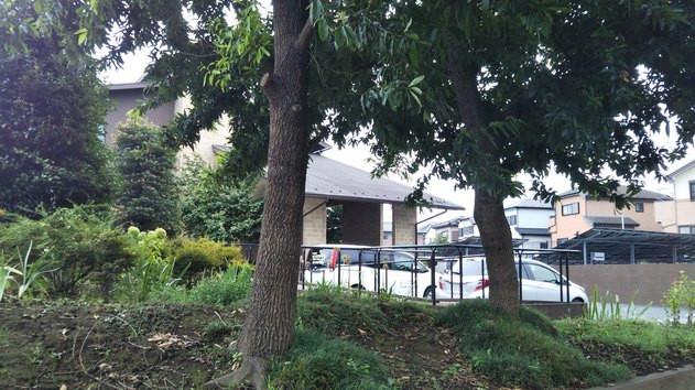 ハーウィル東大宮(サービス付き高齢者向け住宅)の画像(11)