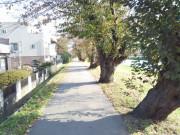 ハーウィル北越谷(サービス付き高齢者向け住宅)の画像(20)