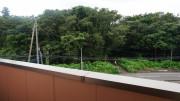 泉の郷綾瀬 (サービス付き高齢者向け住宅)の画像(11)