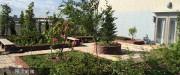 夢別邸すみれが丘(サービス付き高齢者向け住宅)の画像(5)屋上庭園