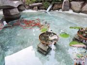 シルバーシティ石神井北館(介護付有料老人ホーム)の画像(27)金魚が泳ぐ池