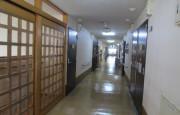 ライフコミューン豊島園(介護付有料老人ホーム)の画像(7)廊下