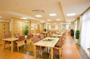 ニチイホーム墨田(介護付有料老人ホーム)の画像(2)広くて明るい食堂