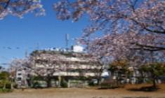 ウェルハイム・東京の画像